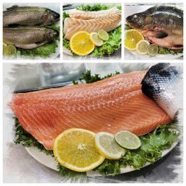 Ryby Świeże